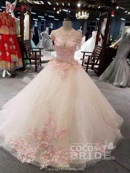 Awesome Appliques Tulle Ball Gown Wedding Dresses_4