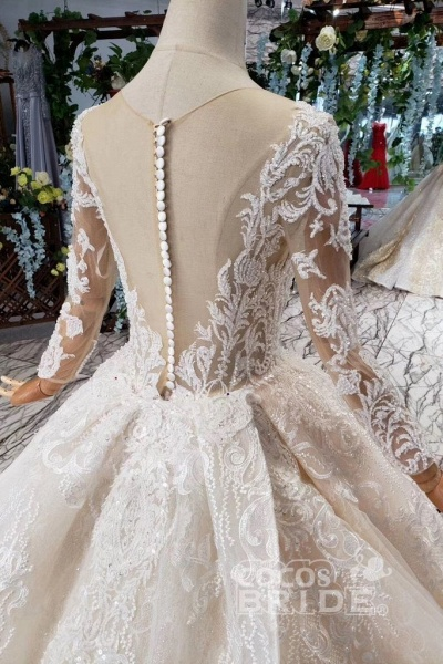 Princess Sleeves Sheer Neck Ball Gown Lace Long Wedding Dress_4