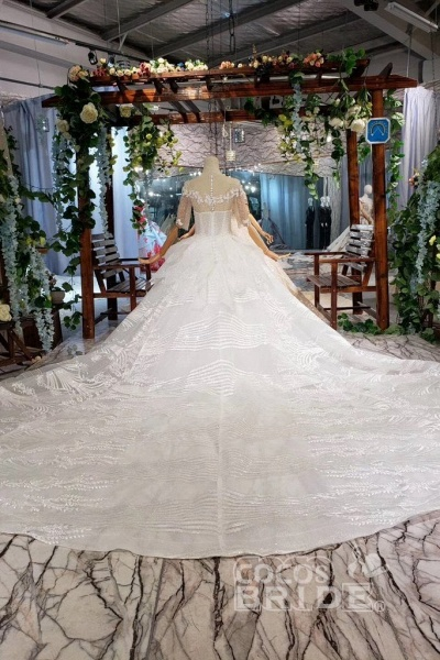 Ball Gown Half Sleeves Lace with Sequins Sheer Neck Long Wedding Dress_7