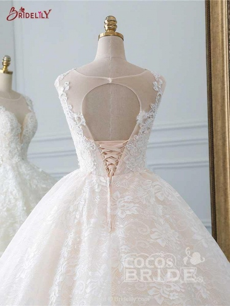 Glamorous Lace Tulle Ball Gown Wedding Dresses_5