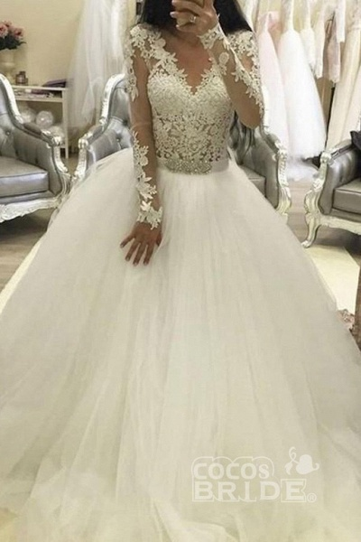 Ball Gown Sleeves V Neck Tulle Princess Long Wedding Dress_2