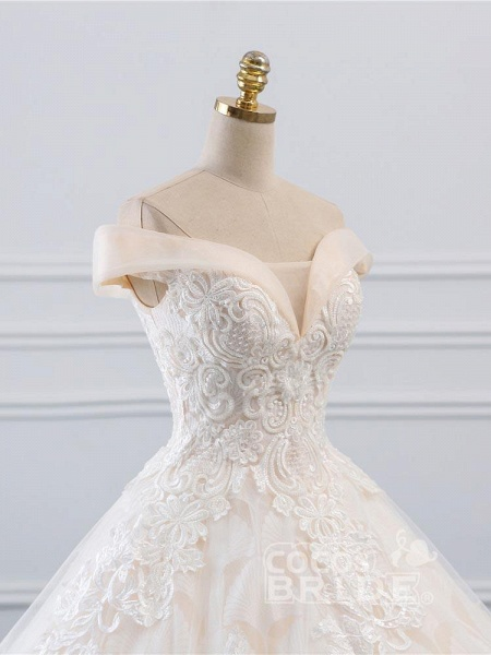 Popular Off-the-Shoulder Lace-Up Ball Gown Wedding Dresses_5