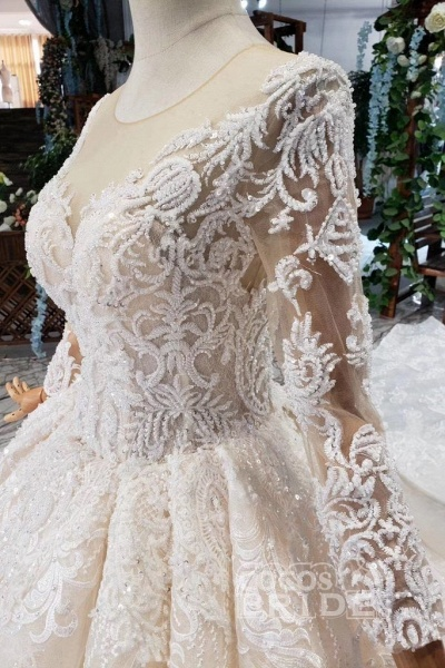 Princess Sleeves Sheer Neck Ball Gown Lace Long Wedding Dress_9