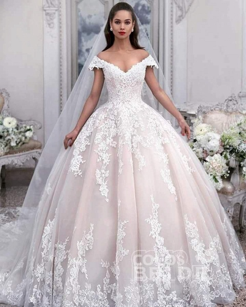 Light Pink Off the Shoulder Ball Gown Tulle with Appliques Wedding Dress_2