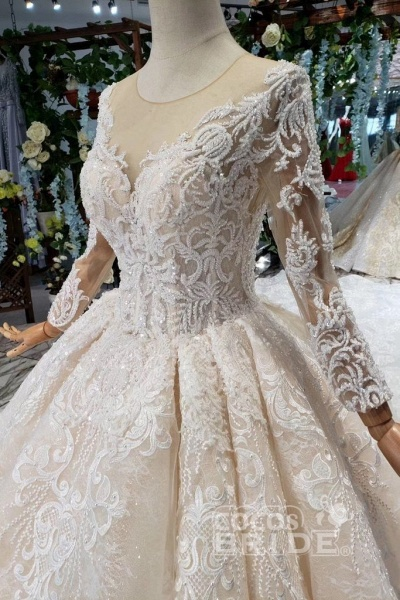 Princess Sleeves Sheer Neck Ball Gown Lace Long Wedding Dress_8