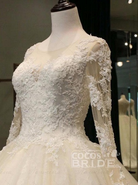 Cathedral Train Appliques Long Sleeve A-line Wedding Dresses_2