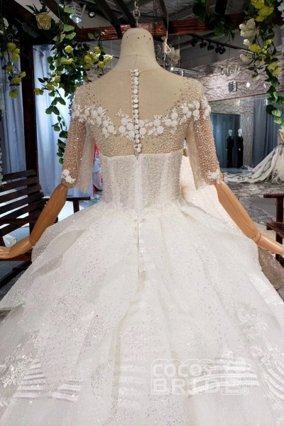 Ball Gown Half Sleeves Lace with Sequins Sheer Neck Long Wedding Dress_2