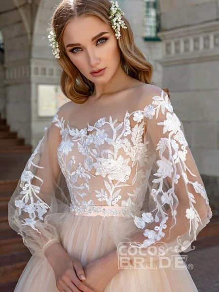 Long Sleeves A-line Appliques Tulle Wedding Dresses_2