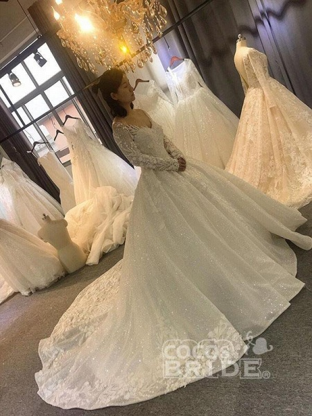 Classical V Neck Long Sleeve Ball Gown Wedding Dresses_4