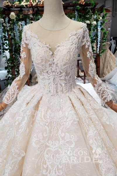 Princess Sleeves Sheer Neck Ball Gown Lace Long Wedding Dress_7