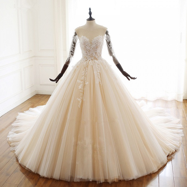 Chic Long Ball Gowns Sweetheart Tulle Lace Wedding Dress with Sleeves_5