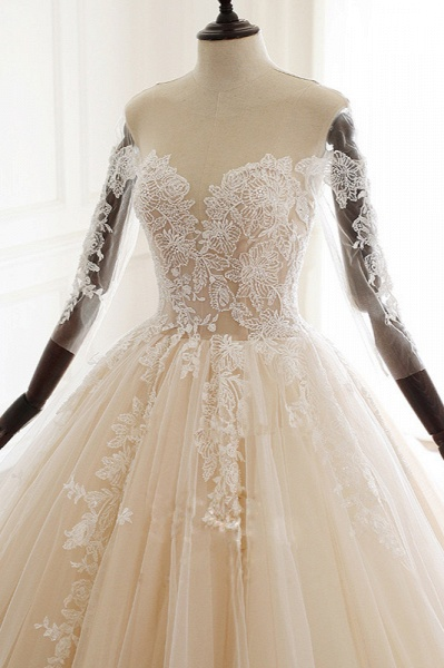 Chic Long Ball Gowns Sweetheart Tulle Lace Wedding Dress with Sleeves_3