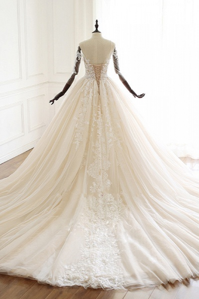 Chic Long Ball Gowns Sweetheart Tulle Lace Wedding Dress with Sleeves_2