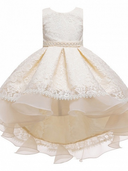 Princess / Ball Gown Floor Length Wedding / Party Flower Girl Dresses - Lace / Tulle Sleeveless Jewel Neck With Sash / Ribbon / Embroidery_6