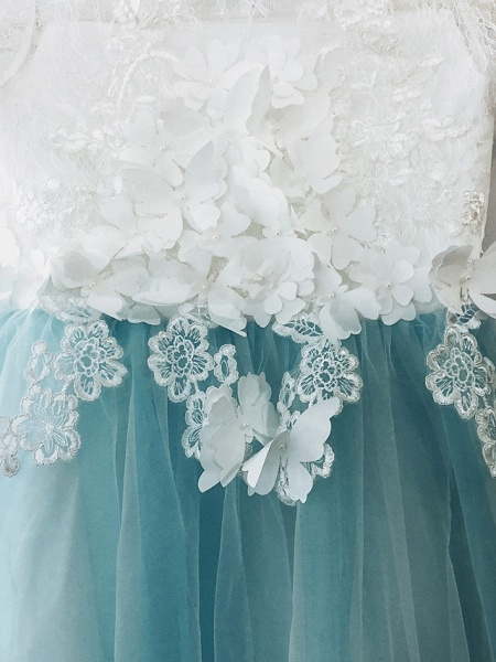 Ball Gown Sweep / Brush Train Wedding / Birthday / Pageant Flower Girl Dresses - Tulle / Cotton Short Sleeve Jewel Neck With Lace / Embroidery / Appliques_8