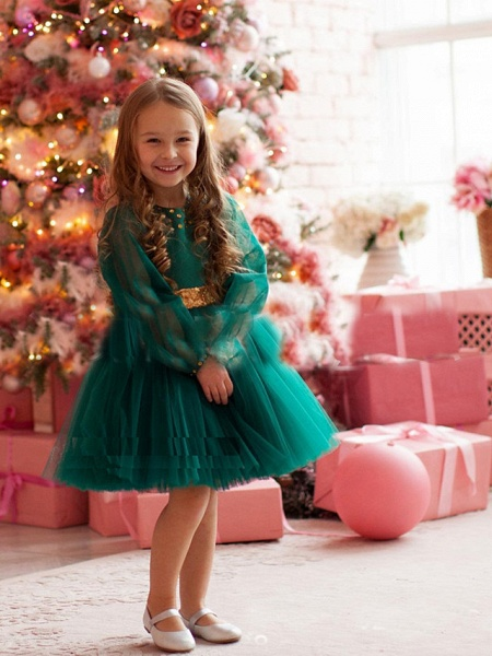 Princess / A-Line Floor Length Party / Birthday Flower Girl Dresses - Tulle Long Sleeve Jewel Neck With Beading / Paillette_1