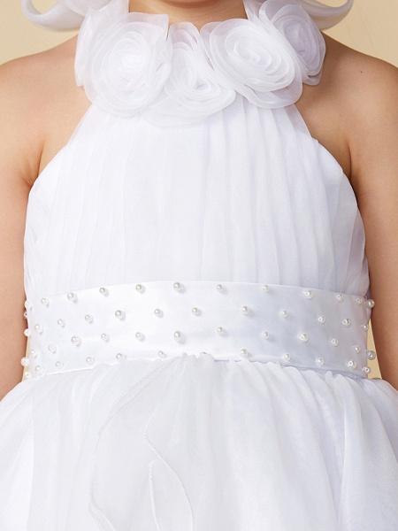 A-Line Asymmetrical Wedding / First Communion Flower Girl Dresses - Organza Sleeveless Halter Neck With Bow(S) / Pleats_7