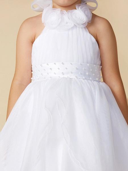 A-Line Asymmetrical Wedding / First Communion Flower Girl Dresses - Organza Sleeveless Halter Neck With Bow(S) / Pleats_5
