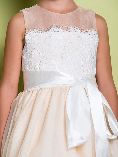 A-Line Floor Length Lace / Organza Sleeveless Jewel Neck With Lace_8