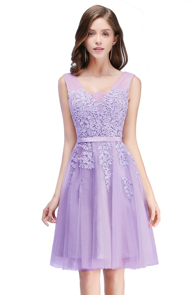 Glorious V-neck Tulle A-line Evening Dress_5