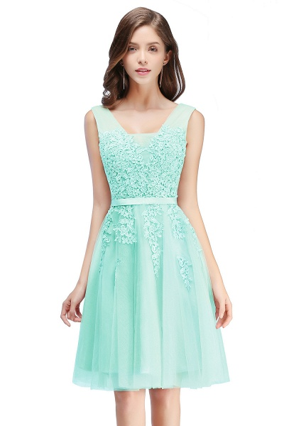 Glorious V-neck Tulle A-line Evening Dress_9