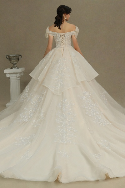 CPH244 Elegant Off-the-Shoulder Tulle Lace Ball Gown Floor Length Luxury Wedding Dresses_2