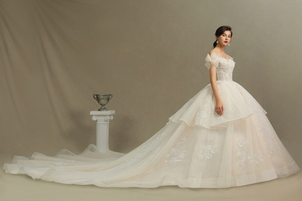 CPH244 Elegant Off-the-Shoulder Tulle Lace Ball Gown Floor Length Luxury Wedding Dresses_8