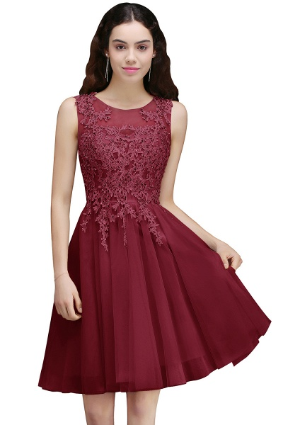 ANNA | A-line Short Modern Homecoming Dress With Lace Appliques_2