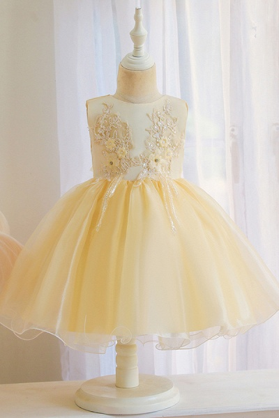 FS9966 Appliques Sleeveless Scoop Ball Gown Wedding Dress_3