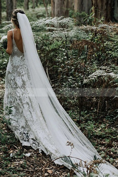 BC5748 Charming Spaghetti Straps Lace Backless A-line Wedding Dress_3