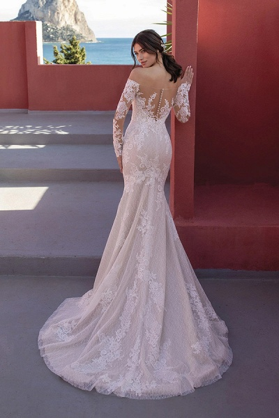 BC5668 Off The Shoulder Mermaid Illusion Lace Lone Sleeve Wedding Dress_2