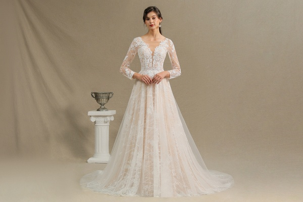 CPH230 Sheer Tulle Long Sleeve A-line Illusion Lace Wedding Dress_4