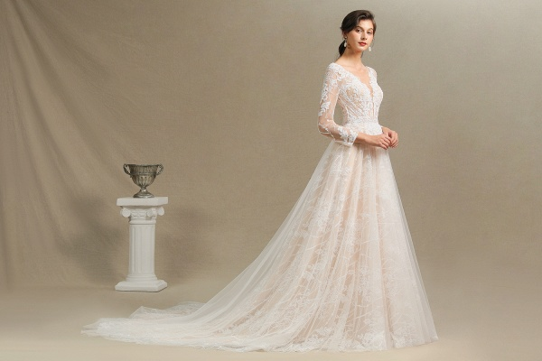 CPH230 Sheer Tulle Long Sleeve A-line Illusion Lace Wedding Dress_10