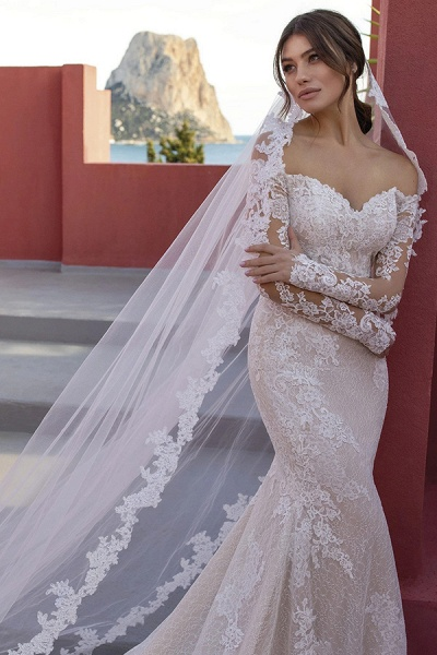 BC5668 Off The Shoulder Mermaid Illusion Lace Lone Sleeve Wedding Dress_3