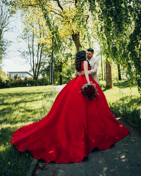 Luxury Long Princess Satin V-neck Wedding Dresses with Lace_3