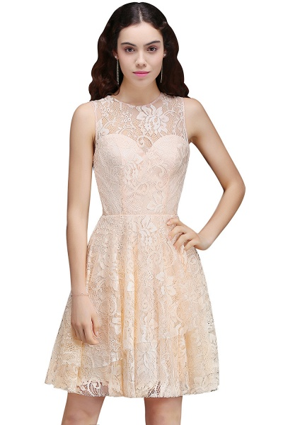 Precious Jewel Lace A-line Homecoming Dress_1