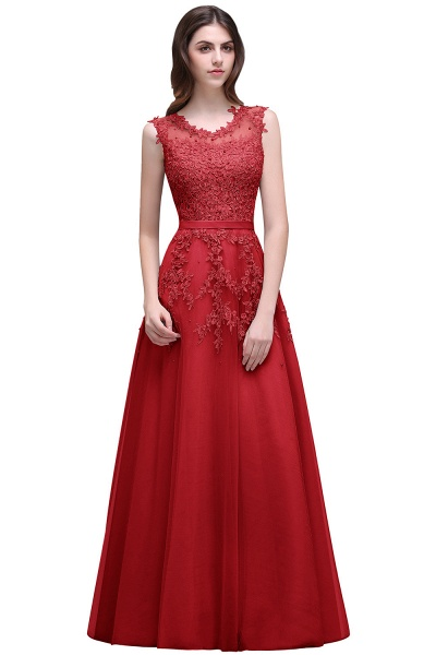 Beautiful V-neck Tulle A-line Evening Dress_2