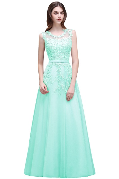 Beautiful V-neck Tulle A-line Evening Dress_9