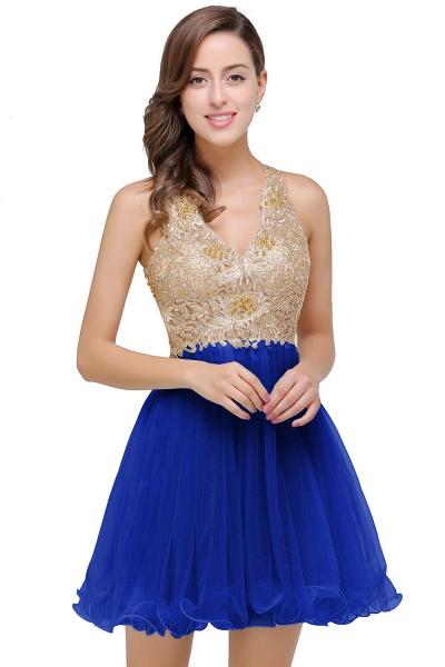 Short Tulle A-line V-Neck Appliques Sleeveless Prom Dresses_2