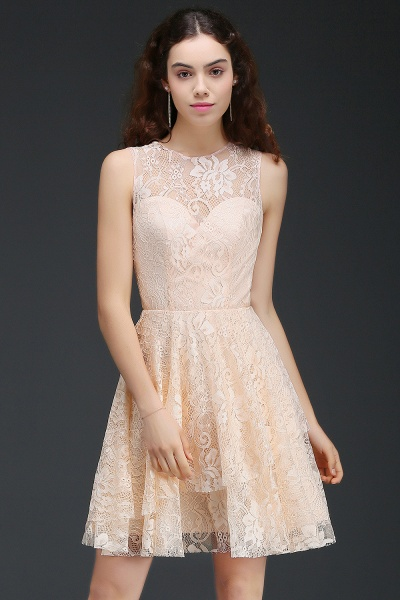 Precious Jewel Lace A-line Homecoming Dress_4