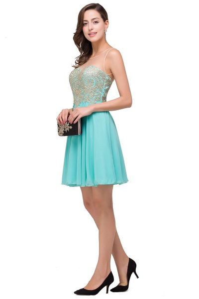 Appliques Elegant Short Sleeveless Chiffon Prom Dresses_6