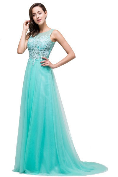 A-line Tulle Appliques Court Train Evening Dress_11