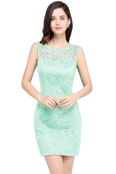 Elegant Scoop Lace Column Bridesmaid Dress_7