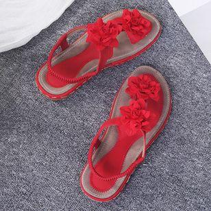 Women's Applique Flip-Flops Flat Heel Sandals_3