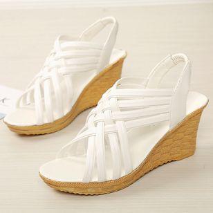 Women's Slingbacks Wedge Heel Sandals_2