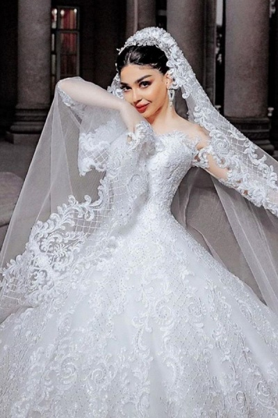 Long Princess Tulle Beads Appliques Wedding Dress with Sleeves