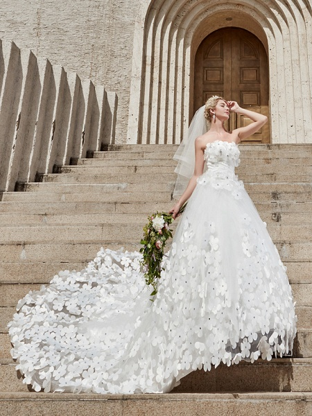 Ball Gown Wedding Dresses Strapless Court Train Tulle Strapless Country Glamorous Plus Size_9