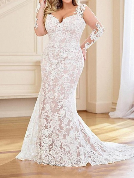 Mermaid \ Trumpet V Neck Sweep \ Brush Train Lace Organza Long Sleeve Country Plus Size Wedding Dresses_2