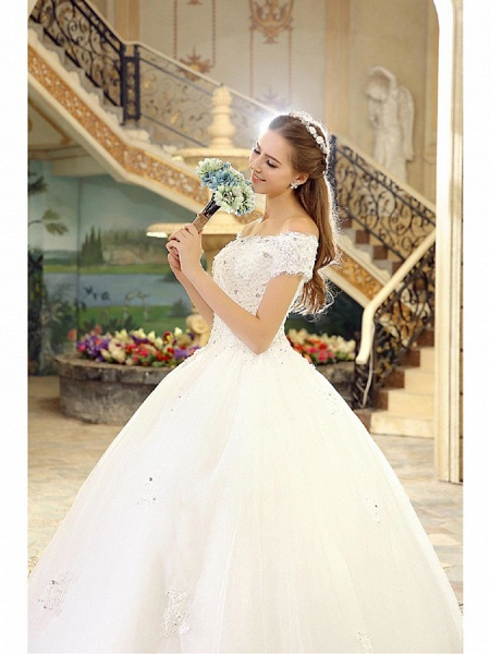 Ball Gown Wedding Dresses Off Shoulder Floor Length Lace Over Tulle Short Sleeve Casual Vintage Plus Size_5