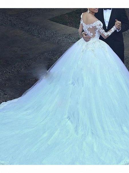 A-Line Wedding Dresses V Neck Court Train Tulle Long Sleeve_2